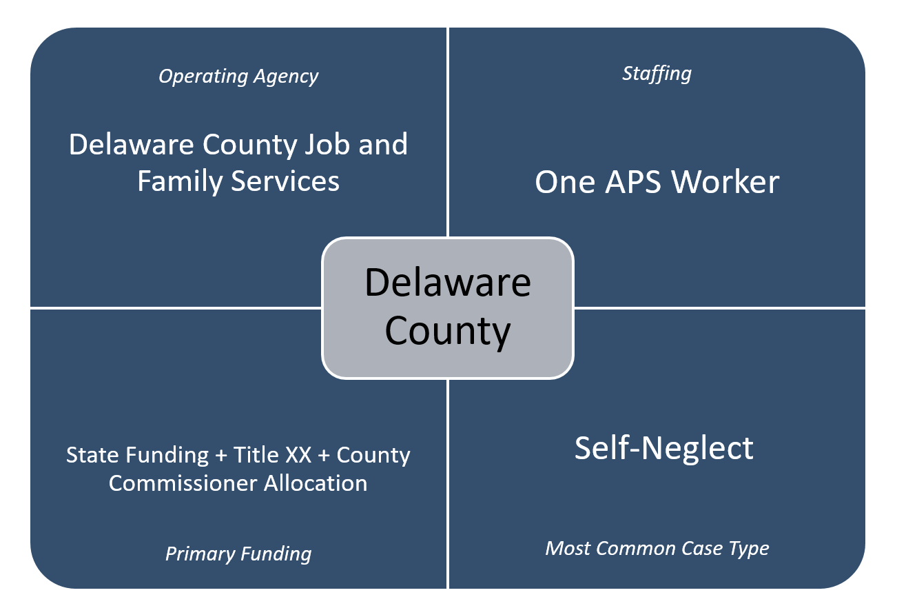 Adult Protective Services: Case Study of Seven Counties